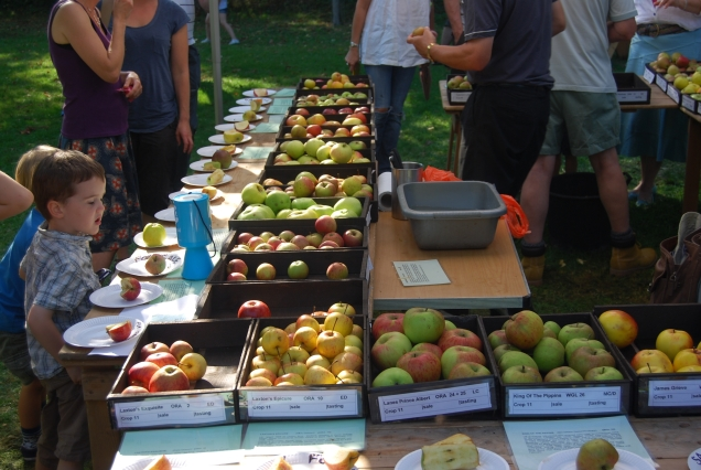 Apple Day - 57 varieties grown at Hughenden